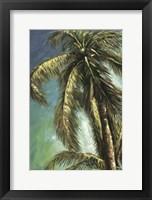 The Coconut Tree I Framed Print