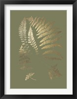 Gold Foil Ferns II on Mid Green - Metallic Foil Framed Print