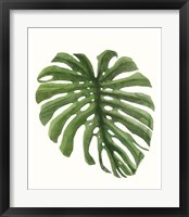 Tropical Breeze Leaves I Framed Print