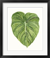Tropical Breeze Leaves II Framed Print