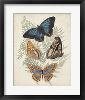 Butterflies & Ferns V Framed Print