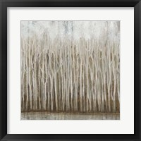 Whispering Trees I Framed Print