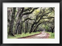 Dirt Road II Framed Print