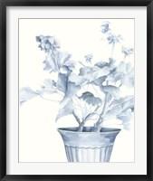 Blue Geranium II Framed Print