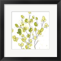 Posy Pop III Framed Print