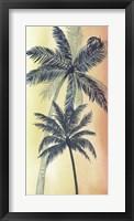 Framed Vintage Palms II