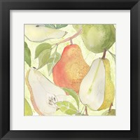 Pear Medley I Framed Print