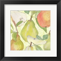Pear Medley II Framed Print