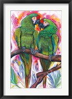 Framed Two Parrots