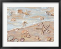 Gifts of the Sea I Framed Print