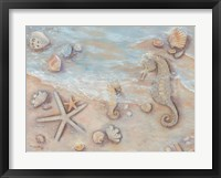 Gifts of the Sea II Framed Print