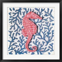 Framed Seahorse and Coral I