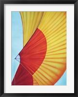 Mango Spinnaker Framed Print