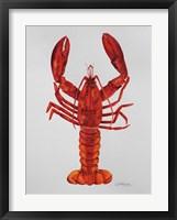 Framed Red Lobster