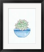 Framed Blue Cactus