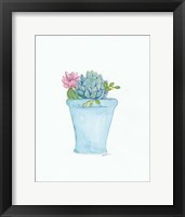 Framed Pink Cactus Flower