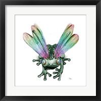 Framed Dragonfrog