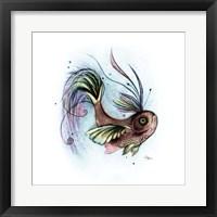 Framed Paradisfish