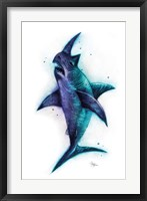 Framed Sharkhino
