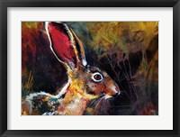 Framed Jack Rabbit