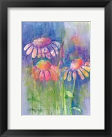 Cone Flower II Framed Print