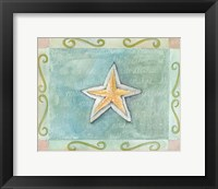 Starfish Seashell Framed Print