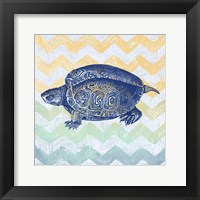 Sea Creatures - Turtle Framed Print