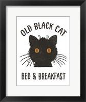 Framed Old Black Cat