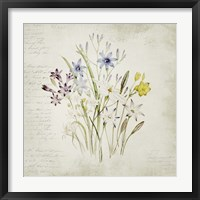 Framed Wild Flowers Three
