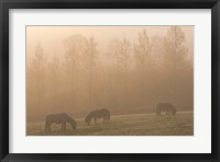 Framed Grazing Ponies