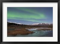 Framed Green Skies