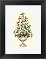 Framed Holly Tree Topiary