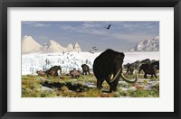 Framed Woolly Mammoths and Woolly Rhinos in a Prehistoric Landscape