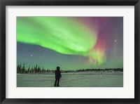Framed Aurora borealis with Vega and Arcturus Stars, Manitoba, Canada