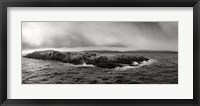 Framed Island of arctic birds and sea lions, Beagle Channel, Patagonia, Argentina