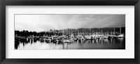 Framed Boats moored in harbor at sunset, Santa Barbara Harbor, California