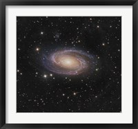 Framed Messier 81 spiral galaxy in the Constellation Ursa Major