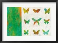 Flight Patterns II Framed Print