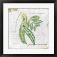 Garden Treasures X Framed Print