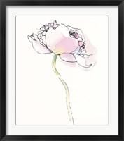 Single Pink Somniferums I on White Framed Print
