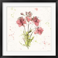 Floral Splash V Framed Print