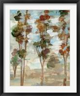 Serene Forest III Framed Print