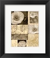 Framed Flora Carte Postale I