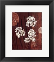 Framed Moonlight Blossoms I