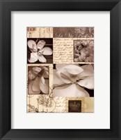 Framed Flora Carte Postale II
