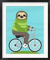 Framed Cycling Sloth