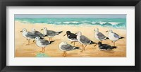 Framed Seagulls and Sand