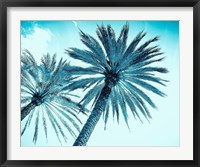Framed Chic Palms