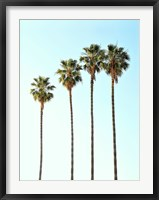 Framed Four Palm Trees