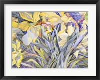 Framed Daffodils, Van Vleck